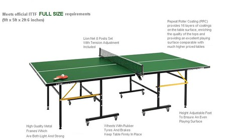 6797193486 8a5ce233e7 Table Tennis