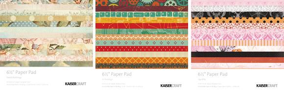 kaiserpapermar2012