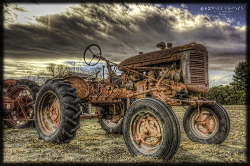 Antique Tractor #5