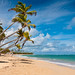 Beach @ Uvero Alto #2