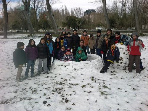 Lobatos en la nieve