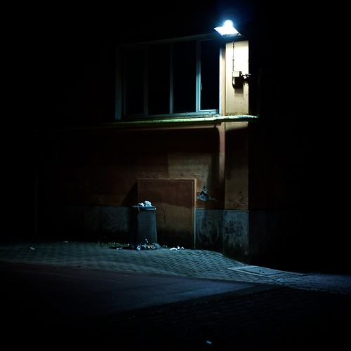 41/365(+1) by Luca Rossini