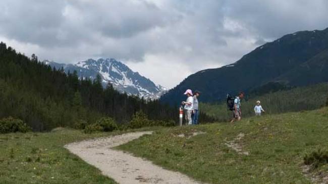 Cesta národním parkem