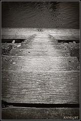 escalier et ponton1