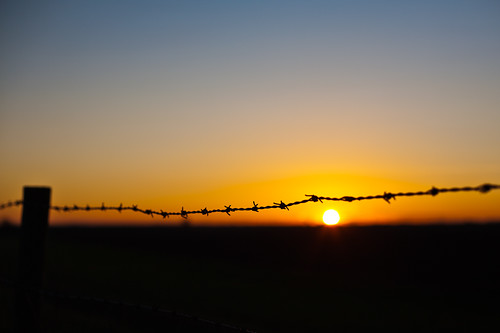 Sunset Behind The Wire Original