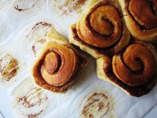 cinnamon buns, devoured