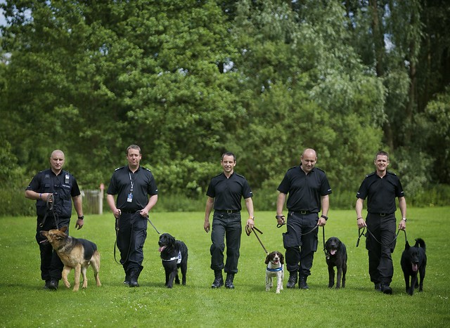 Day 67 - West Midlands Police - Dogs unit
