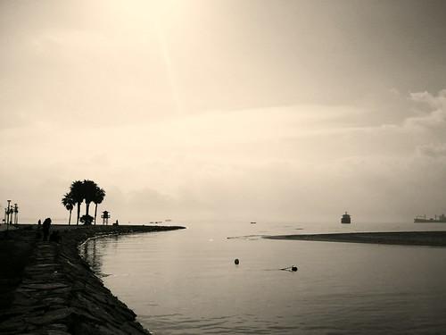76/365+1 Desembocadura del río Palmones by Juan Machado [McKeyn]