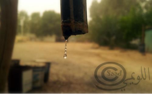 IMG_20120318_143402 by saad salal