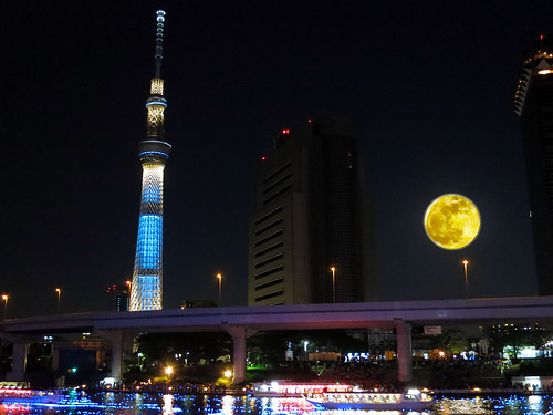 Tokyo-Hotaru-Light-symphony-IMG_2616