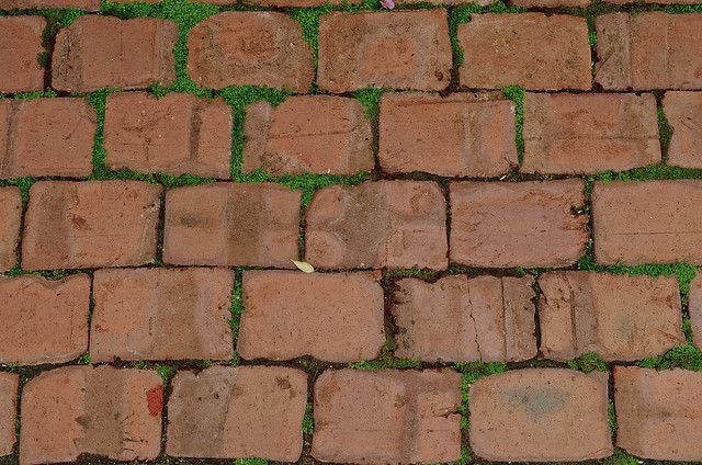 How Much Does It Cost >> tumbled brick pavers | Flickr - Photo Sharing!