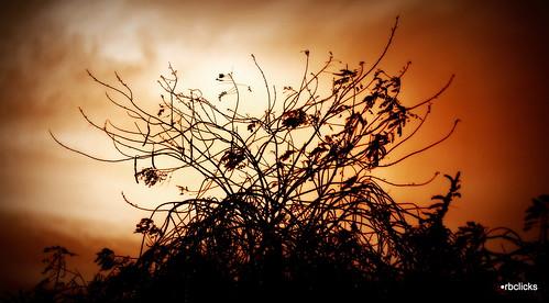 sun abstract colors beautiful mystery hope peace dusk dream amateur flickrawardgallery