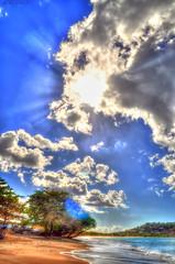 Malabar sunshine
