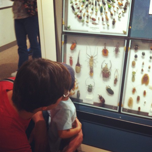 Future biologist