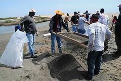 清潔工正在清除路易斯安那州 Fourchon 海灘的焦油,2012年3月20日。(Elizabeth H. Bordelon 攝影/美國海岸防衛隊提供)