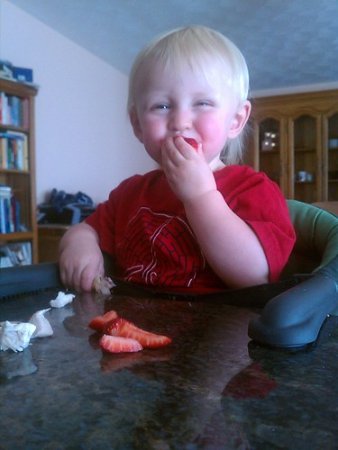 organic chicken and strawberries for lunch by marymactavish