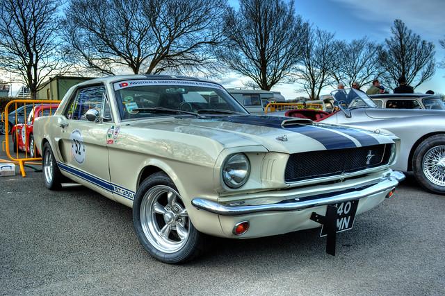Mustang Girls