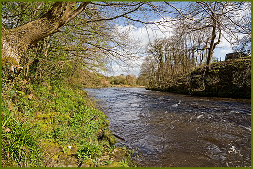 trees water wales river scenery trevor veiw riverdee waterscapes northwales