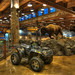 Bass Pro Shops Arctic Cat by Thad Roan - Bridgepix