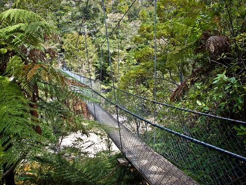 Parque Nacional de Abel Tasman 19