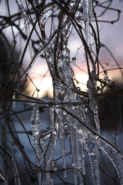 ice and sunset