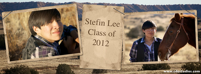 Stefin Timeline Cover