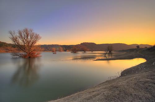 trees sunset lake tree water clear greece ηλιοβασίλεμα δέντρα λίμνη kozani νερό δέντρο κοζάνη