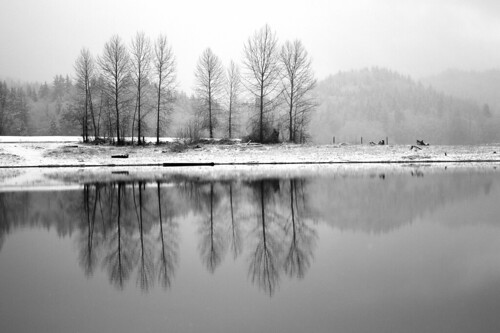 Mid-winter in Alder Lake Park by The Bacher Family