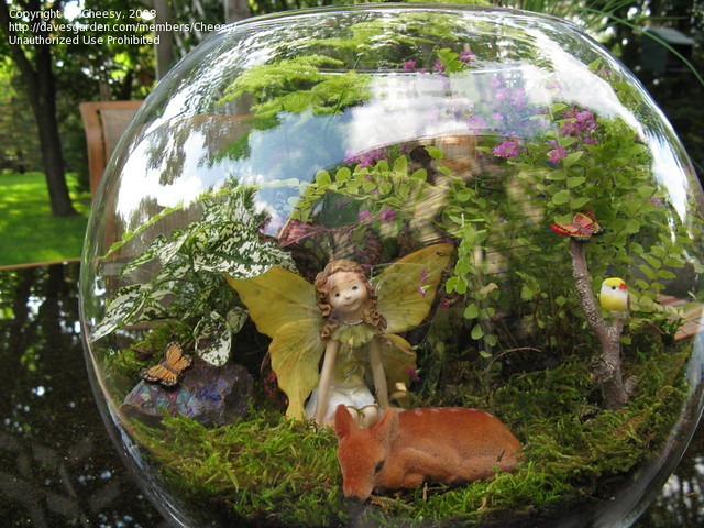 14 Fabulous and Cute Mini Fairy Gardens