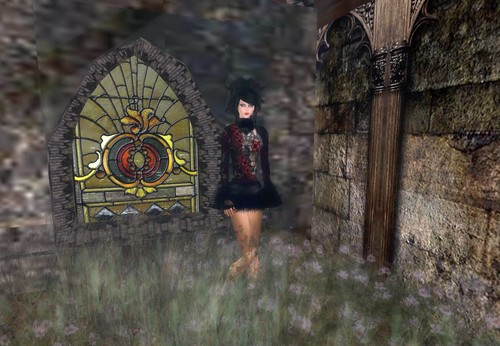 Alchemy Red Rose dress Group Gift by Cherokeeh Asteria