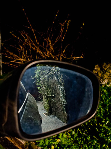 1000/761: 21 March 2012: Wing mirror reflections by nmonckton