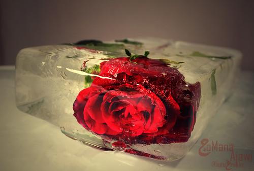 وتجمدت كل المشاعر في غيابك . . by جمانه أجاوي | JoMana Ajawi