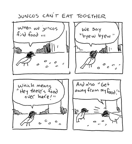 Junco Language