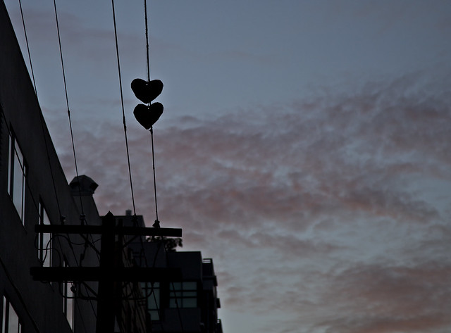 Love on a Wire