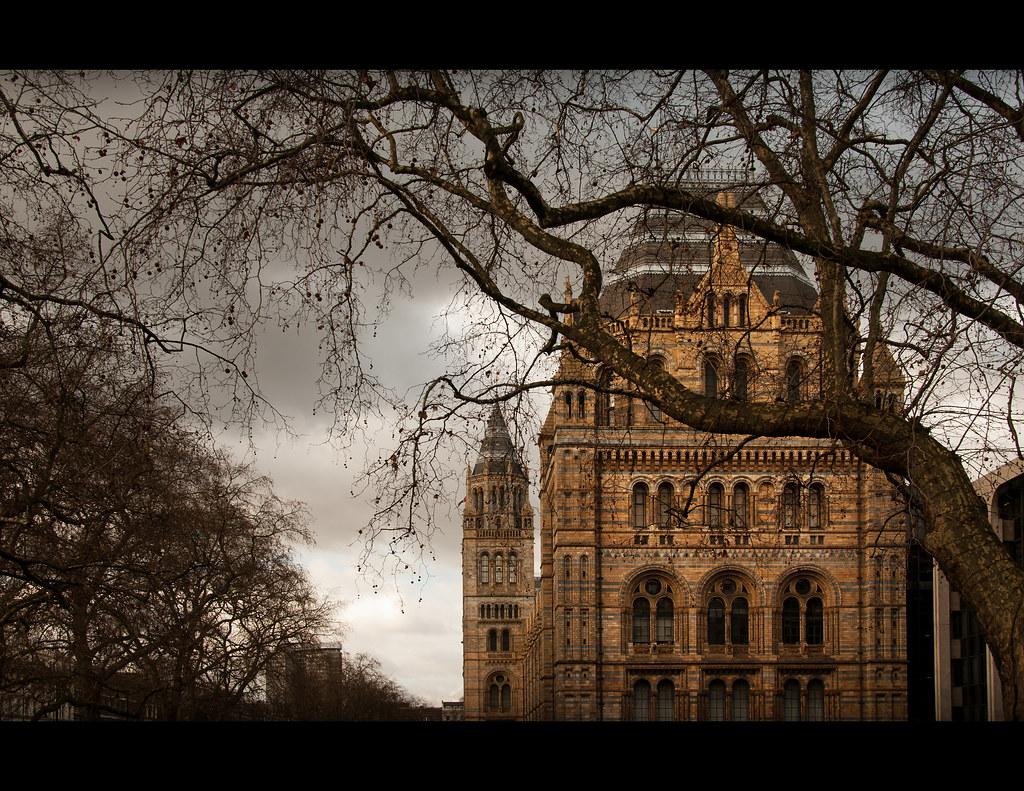Hotels Near Albert Hall London