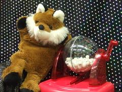 Foxy Bingo!