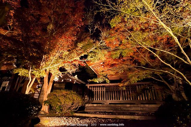 夜楓永觀堂