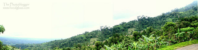 Davao Mountain