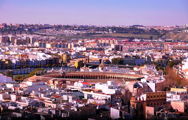Seville from the Giralda Tower