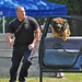 Police K-9 Olympics 07-17-10 Old photos edited for a K 9 magazine!! by mamaroo10 ~~Have a nice day!!! ;-))