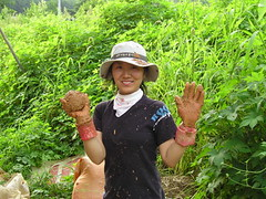 agriculture(0.0), produce(0.0), food(0.0), crop(0.0), farm(1.0), soil(1.0), plant(1.0), gardener(1.0), farmworker(1.0), jungle(1.0), plantation(1.0),