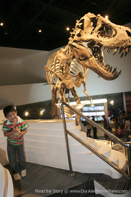 The Mind Museum @ BGC-61.jpg