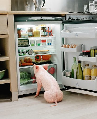 Hog in the Fridge by Mr Energy Hog