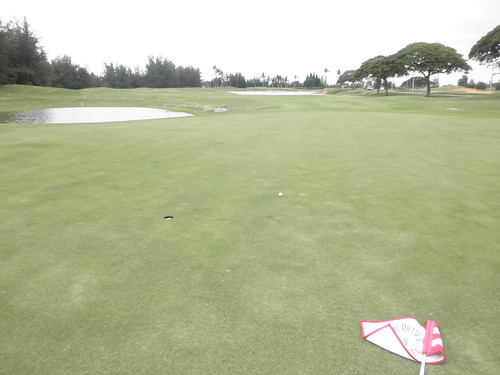 Hawaii Prince Golf Club 155