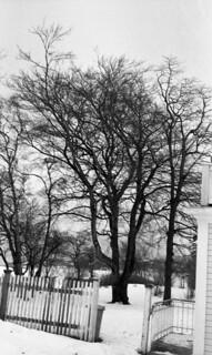 Ved Østmarka sykehus (1981)