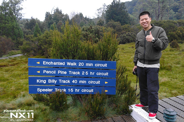 enchanted walk12