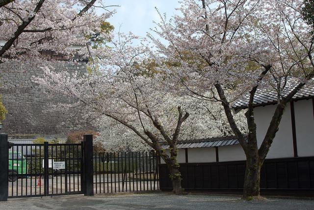2012-kyushu-454