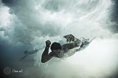 sydney (swimming)