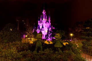 Cinderella's Castle in Pink