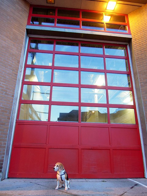 At the Fire Station